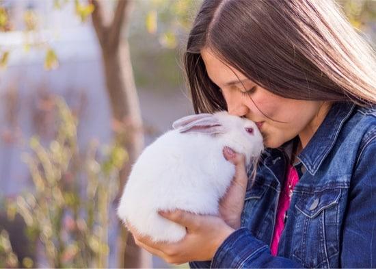 do rabbits understand kisses?