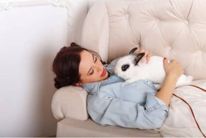 how do rabbits communicate with their human owners?
