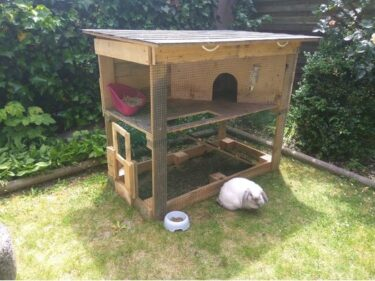 how to prepare a rabbit hutch