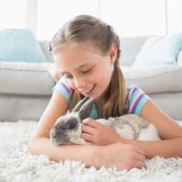 do rabbits attention seek?