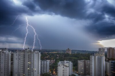 are rabbits afraid of thunder?