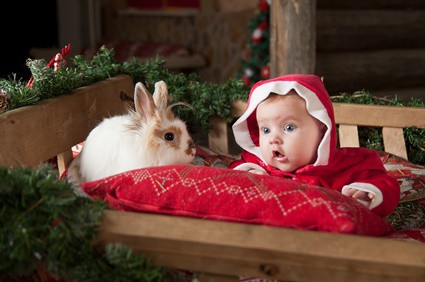 are rabbits good with babies?