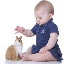 can babies be around bunnies?