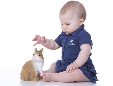 can babies be around bunnies?